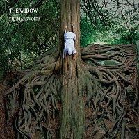 The Mars Volta – The Widow
