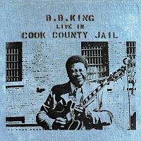 Přední strana obalu CD Live In Cook County Jail