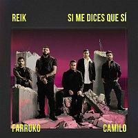 Reik, Farruko, Camilo – Si Me Dices Que Sí