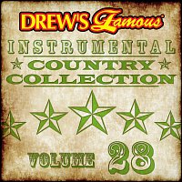 The Hit Crew – Drew's Famous Instrumental Country Collection [Vol. 28]