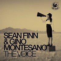 Sean Finn & Gino Montesano – The Voice
