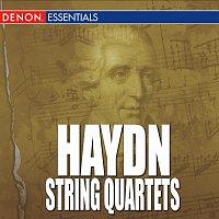 Joseph Haydn, Hungarian String Quartet – Haydn - String Quartets