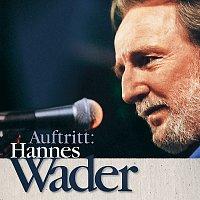 Hannes Wader – Auftritt: Hannes Wader [Live]