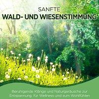 Naturklang – Sanfte Wald- und Wiesenstimmung - Beruhigende Klänge und Naturgeräusche zur Entspannung, für Wellness und zum Wohlfühlen