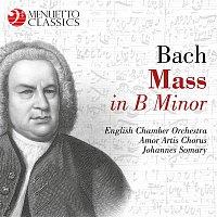 English Chamber Orchestra, Amor Artis Chorus, Johannes Somary – Bach: Mass in B Minor, BWV 232