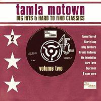 Různí interpreti – Big Motown Hits & Hard To Find Classics - Volume 2