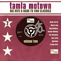 Různí interpreti – Big Motown Hits & Hard To Find Classics - Volume 2