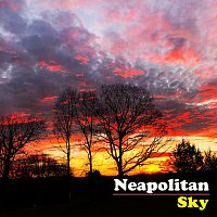 The Avett Brothers – Neapolitan Sky