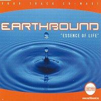 Přední strana obalu CD Essence Of Life