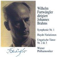 Wilhelm Furtwangler – Wilhelm Furtwangler dirigiert Johannes Brahms