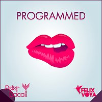 Peter Bacall, Felix Voya – Programmed (To Be Perfect)
