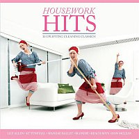 Atomic Kitten – Housework Hits