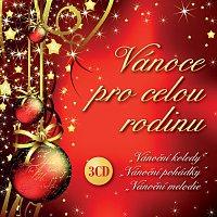 Conventus Musicorum, Hana Krtičková – Vánoce pro celou rodinu