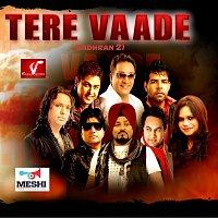 Various Artist – Tere Vaade