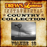 The Hit Crew – Drew's Famous Instrumental Country Collection Vol. 13