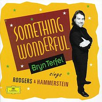 Bryn Terfel, English Northern Philharmonia, Paul Daniel – Bryn Terfel - Something Wonderful