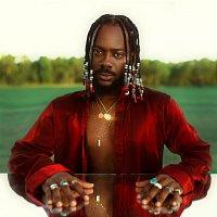 Adekunle Gold – Afro Pop, Vol. 1