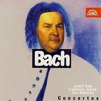 Přední strana obalu CD Bach: Koncerty pro housle a orchestr