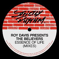 Roy Davis & The Believers – Essence Of Life