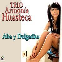 Trío Armonia Huasteca – Alta y Delgadita