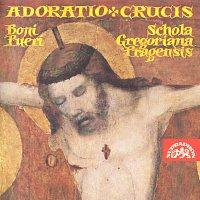 Přední strana obalu CD Adoratio crucis