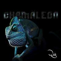 Quiz – Chamaleon