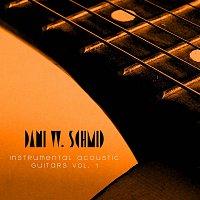 Dani W. Schmid – Instrumental Acoustic Guitars Vol. 1