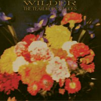 The Teardrop Explodes – Wilder