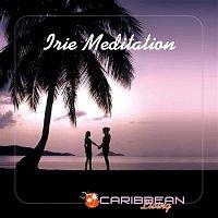 Various Artists.. – Irie Meditation