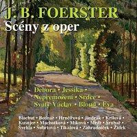 Různí interpreti – Scény z oper
