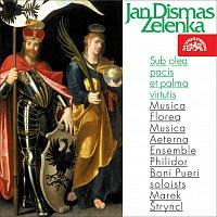 Musica Florea, Marek Štryncl – Zelenka: Sub olea pacis et palma virtutis