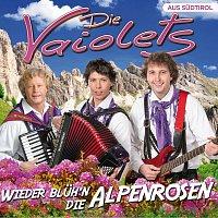 Die Vaiolets – Wieder blüh'n die Alpenrosen