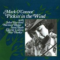 Mark O'Connor, John Hartford, Norman Blake, Sam Bush, Charlie Collins – Pickin' In The Wind