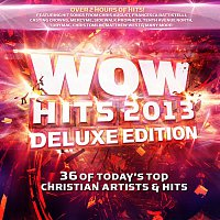 Různí interpreti – WOW Hits 2013 [Deluxe]