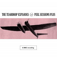 Přední strana obalu CD Peel Sessions Plus