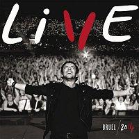 Patrick Bruel – Live 2014