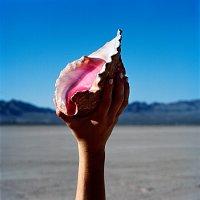 The Killers – Wonderful Wonderful – LP