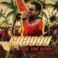 Shaggy – Feel The Rush