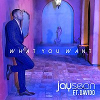 Jay Sean, Davido – What You Want