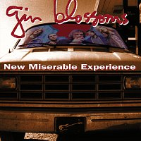 Gin Blossoms – New Miserable Experience