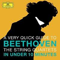 Amadeus Quartet – Beethoven: The String Quartets in under 10 minutes