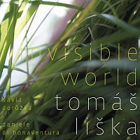Tomáš Liška – Invisible World