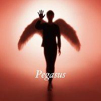 Hotei – Pegasus