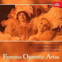 Různí interpreti – Árie ze světových operet (Jacques Offenbach, Florimond Hervé, Johann Strauss)
