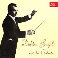 Orchestr Dalibora Brázdy – Dalibor Brázda se svým orchestrem