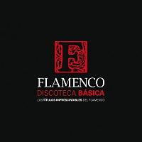 Různí interpreti – Discoteca Básica Del Flamenco