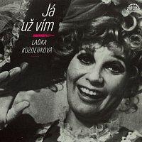 Přední strana obalu CD Já už vím (výběr) + bonus (nahrávky z let 1961-71)