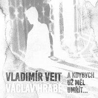 Vladimír Veit – A kdybych už měl umřít...
