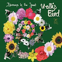 Wallis Bird – Blossoms In The Street [E-Radio Edit]