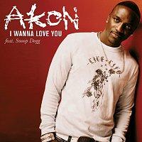Akon, Snoop Dogg – I Wanna Love You